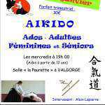 Atelier aikido Adultes 2016 Affiche